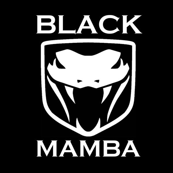Black Mamba Photo